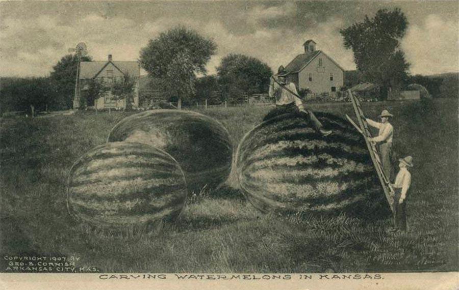 Открытки postcards