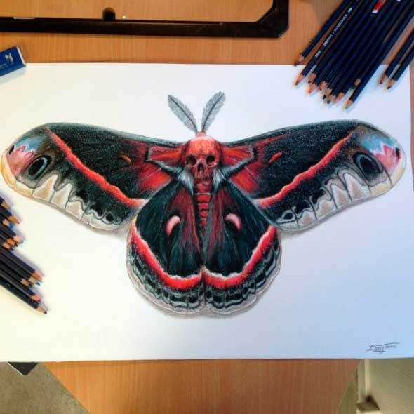 карандашные рисунки Дино Томича pencil drawings Dino Tomic Бабочка Мертвая голова