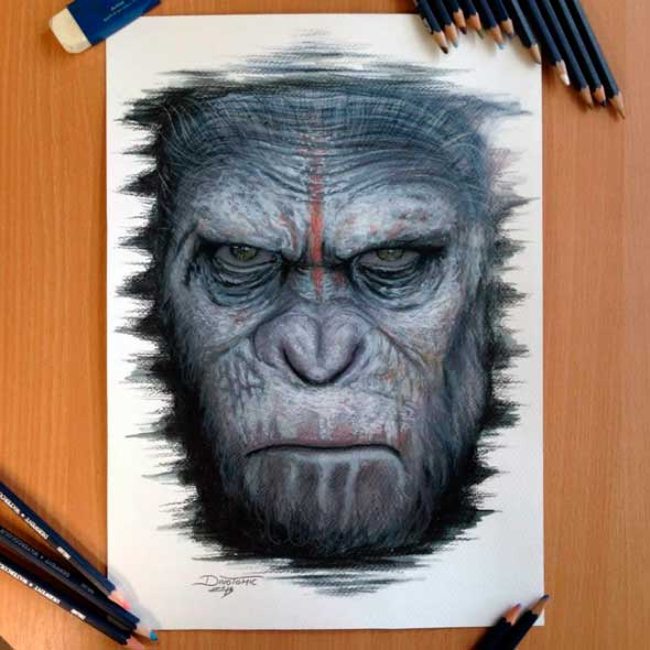 карандашные рисунки Дино Томича pencil drawings Dino Tomic Цезарь