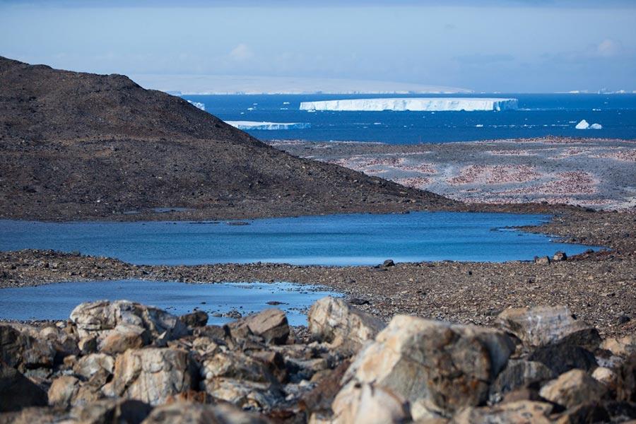 Gaston Lacombe Гастон Лакомб фотографии изменят представление об Антарктиде photo change the idea about Antartica
