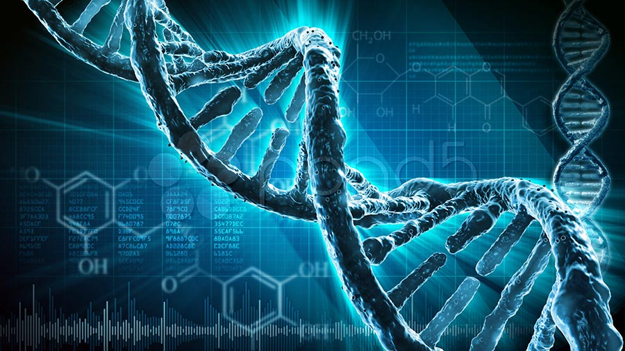 научные истории 2017 года scientific stories of 2017 человек модификация генов people modofication genes