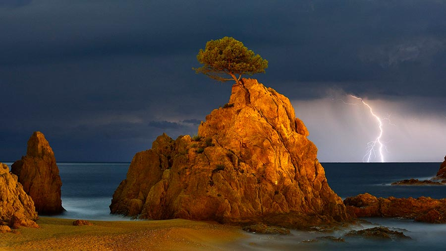 Фотоконкурс Siena International Photo Awards 2017 сосна на скале в свете молнии и полной луны pine tree on a rock in the lightning and the full moon Мигель Анхель Артус Иллана Miguel Angel Artus Illana