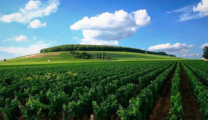 достопримечательности ЮНЕСКО sights UNESCO Бургундия Франция Bourgogne France