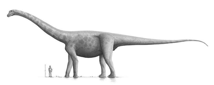 доисторические животные Брухаткайозавр