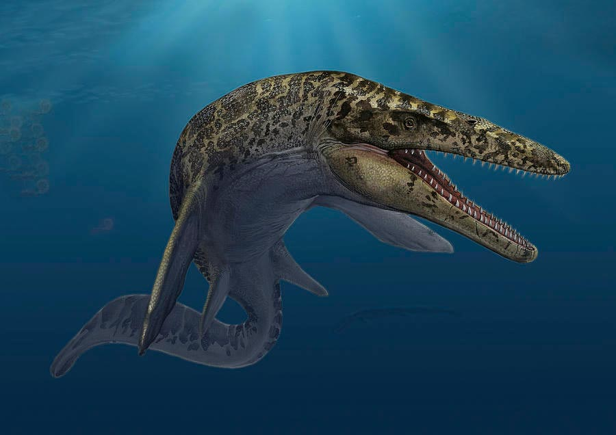 доисторические животные Мозазавр