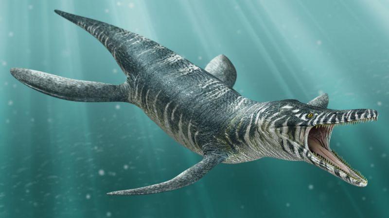 доисторические животные Кронозавр