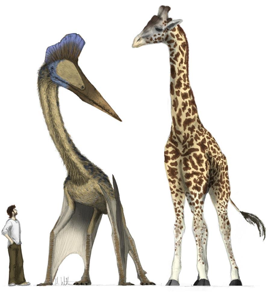 доисторические животные Кетцалькоатль