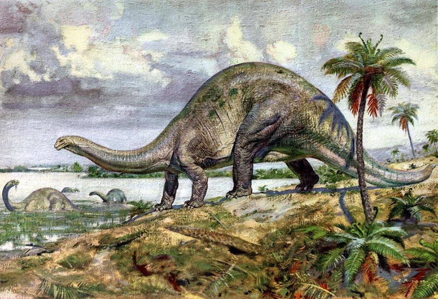 доисторические животные Бронтозавр