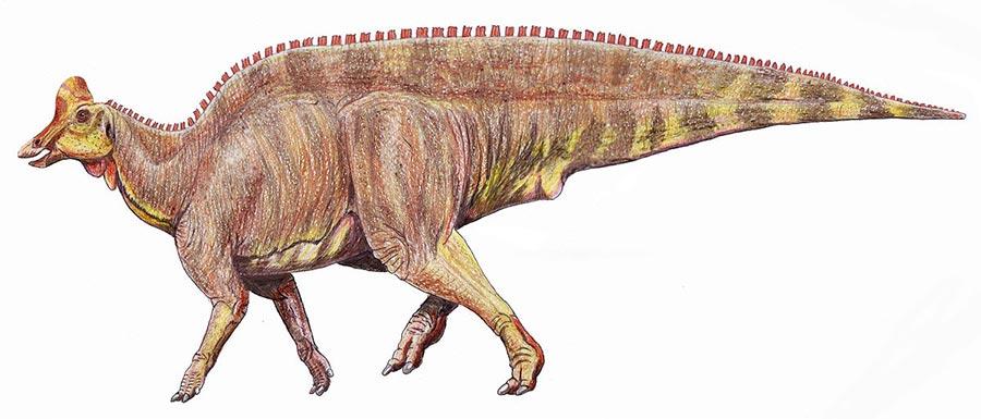 доисторические животные Магнапаулия