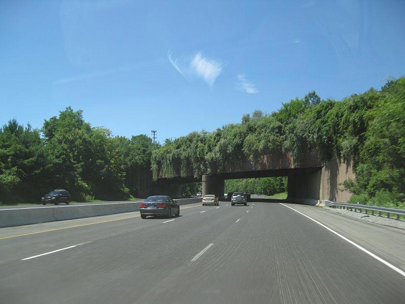 Экодуки: мосты США