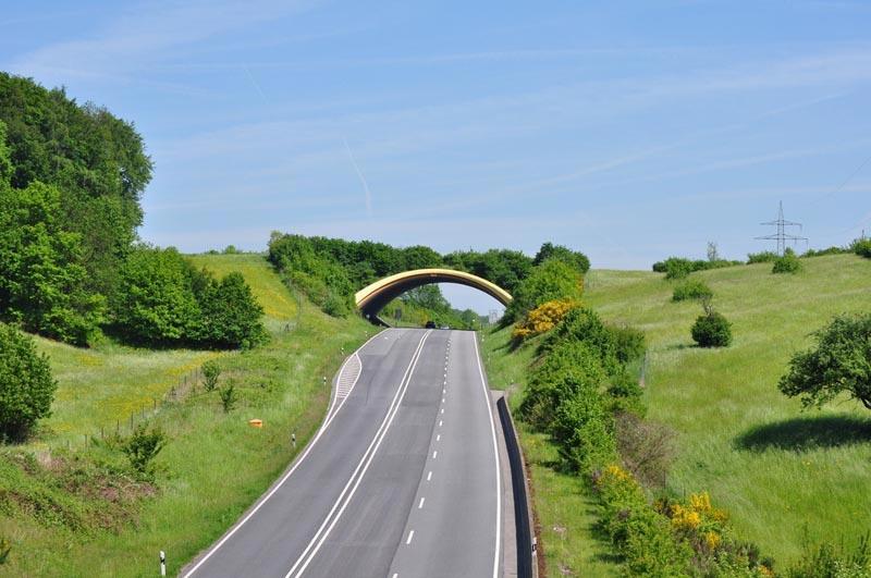 Экодуки: мосты Германия