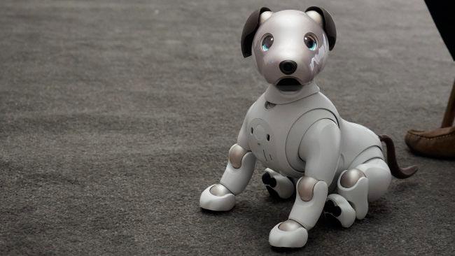 #CES 2018 новая версия робота Aibo