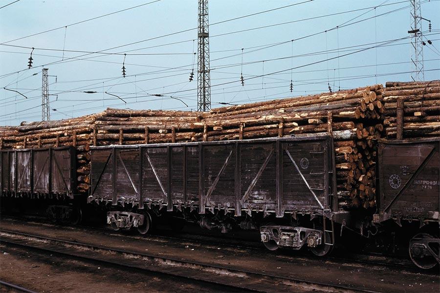 путешествие по Транссибу перевозка древесины