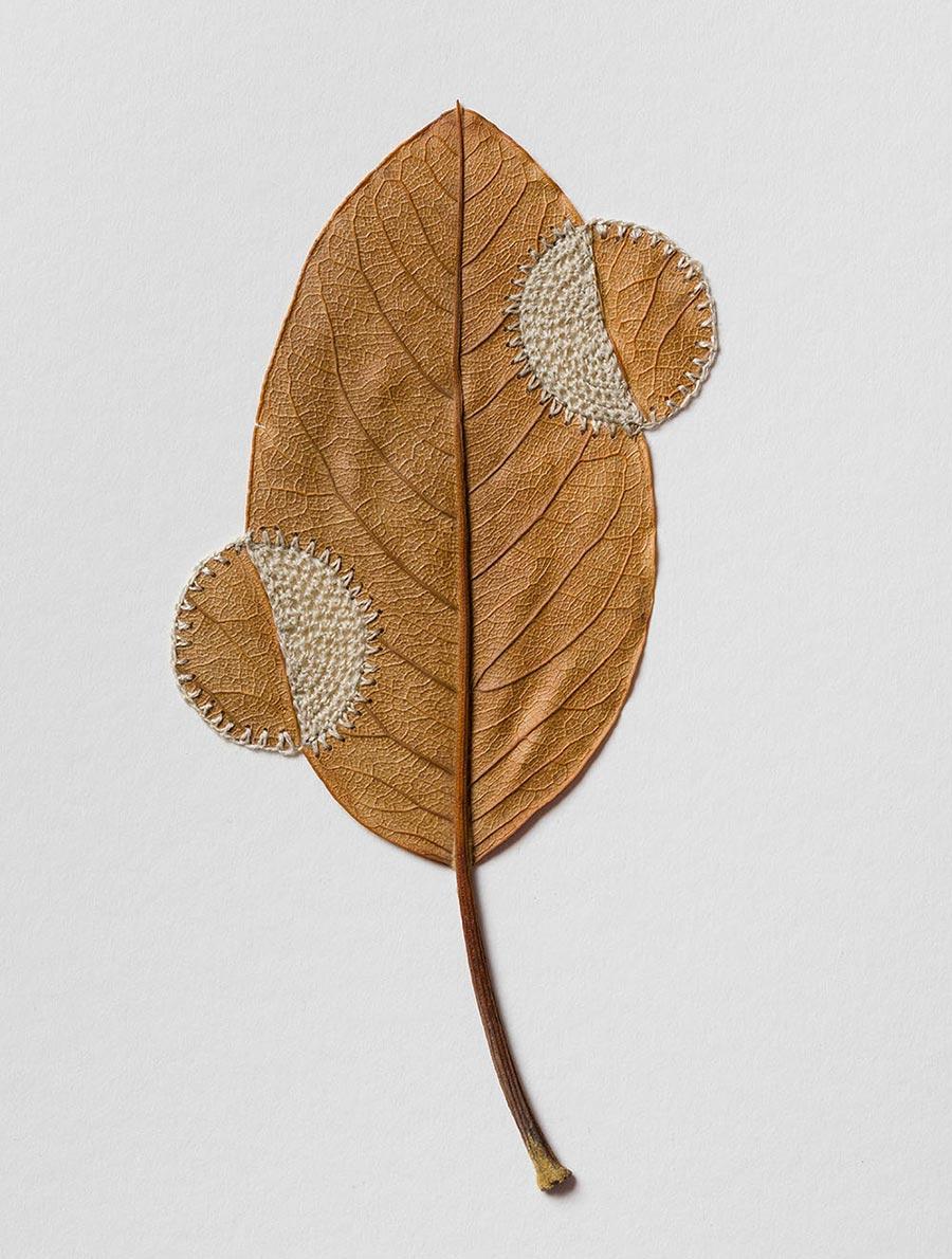 Сюзанна Бауэр Susanna Bauer деликатные скульптуры из сухих листьев