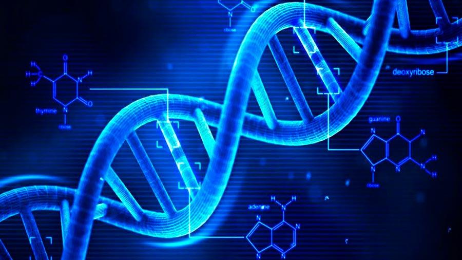 technologies технологии 2018 Генетическое редактирование genetic editing
