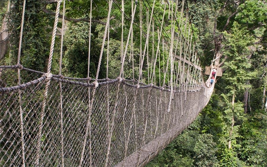 страшные мосты в мире Мост Canopy Walk Гана
