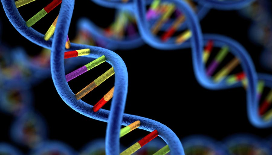 Генетические предсказания технологии 2018 года