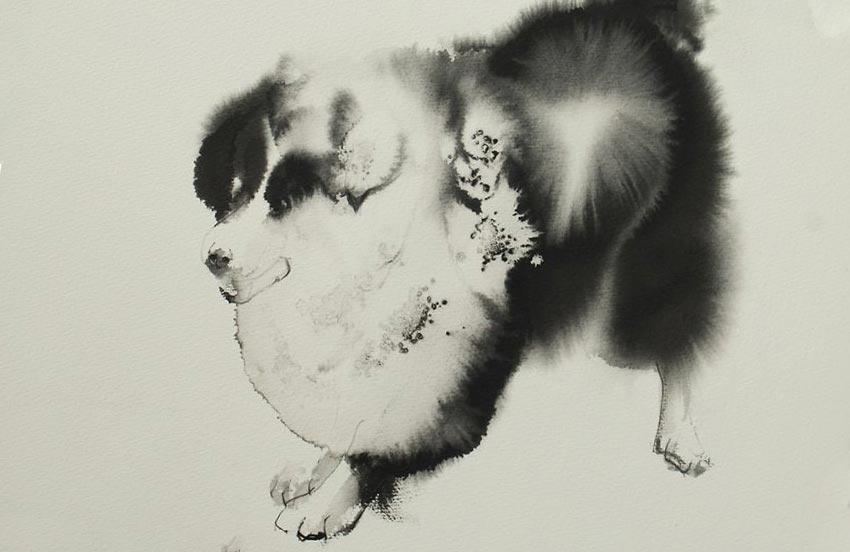 Эндре Пеновак Endre Penovac рисует собак акварелью и чернилами