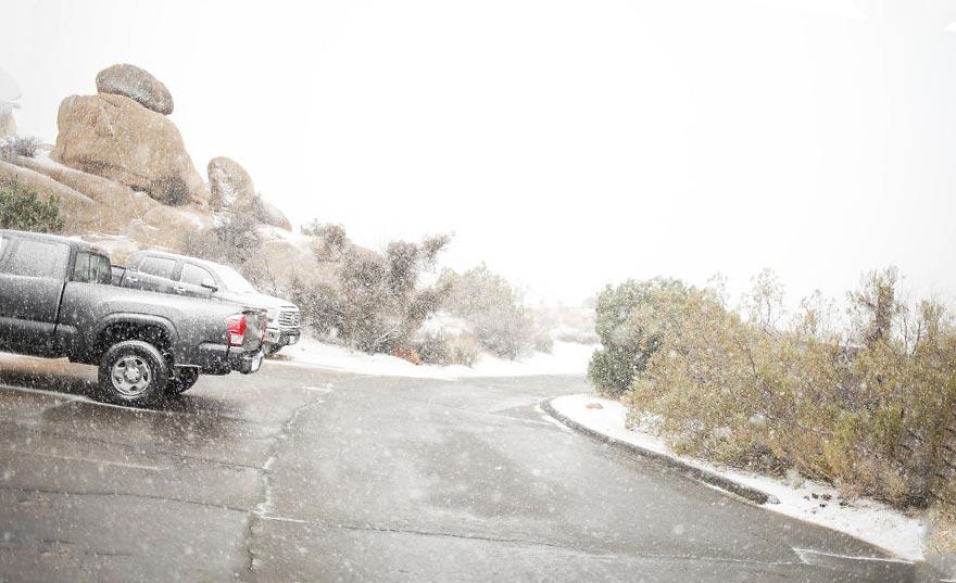 снег в национальном парке Joshua Tree