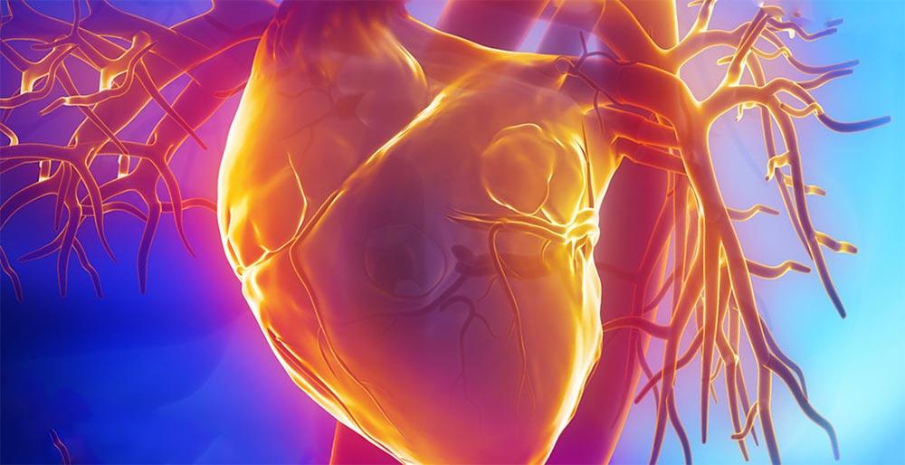 10 шагов для укрепления сердца