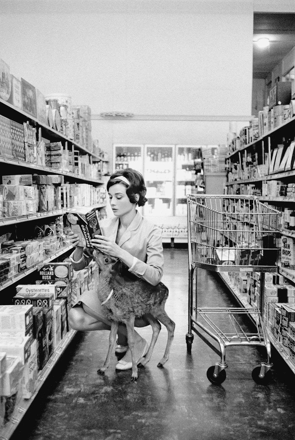 Экзотические питомцы Одри Хепберн и её оленёнок