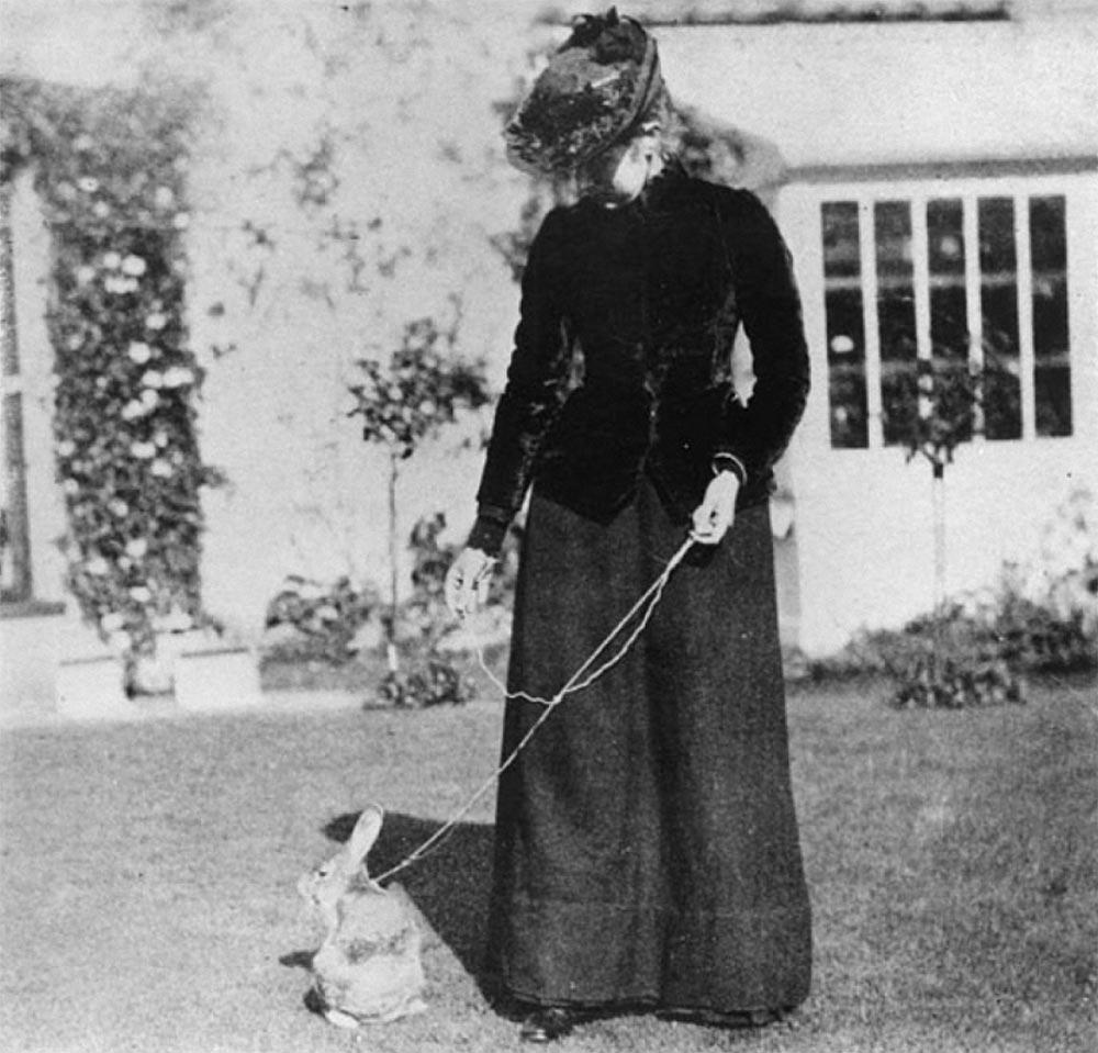 Экзотические питомцы Беатрис Поттер с кроликом Бенжамин Баунсер