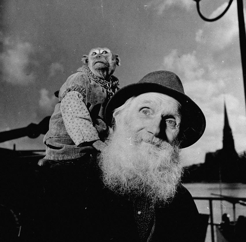 Экзотические питомцы артист с обезьянкой