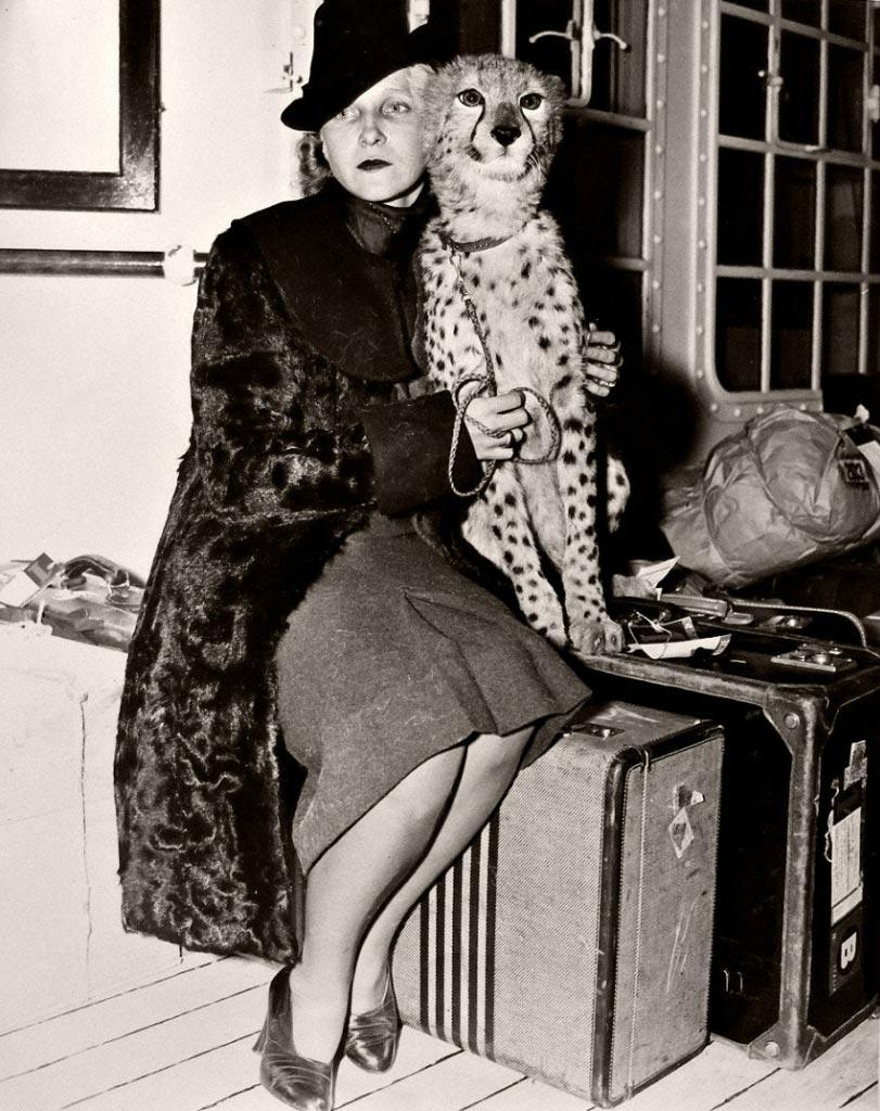 Экзотические питомцы Графиня Эльвира де Флони с гепардом