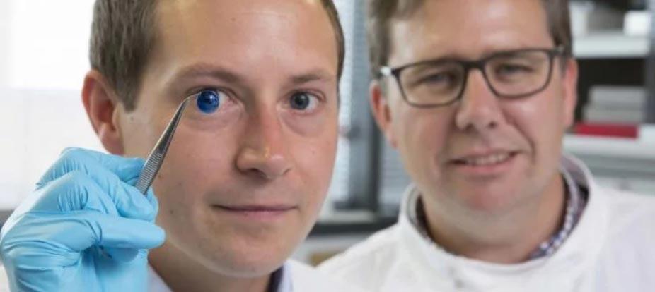 Впервые создана искусственная человеческая роговица