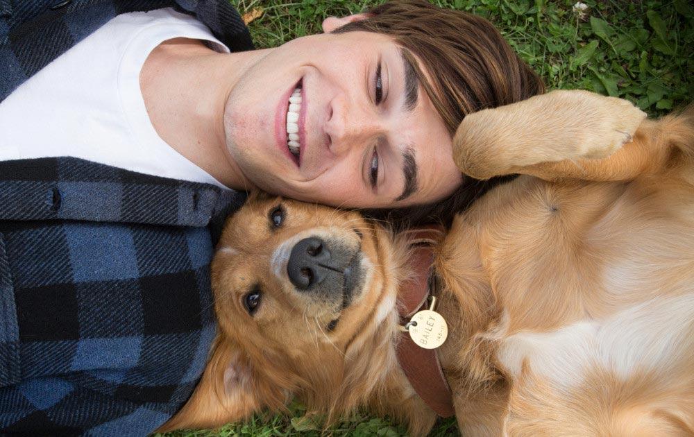 фильмы про животных Собачья жизнь