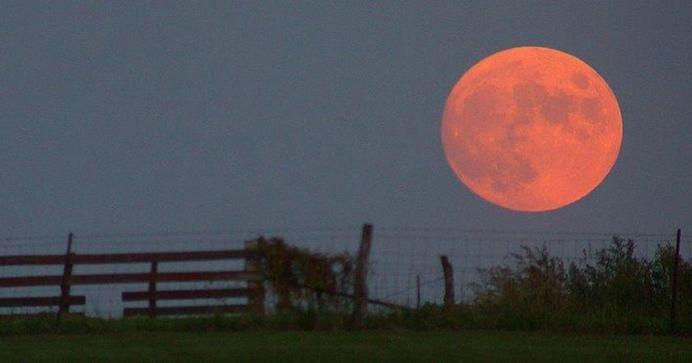 оптические явления в природе Лунная иллюзия