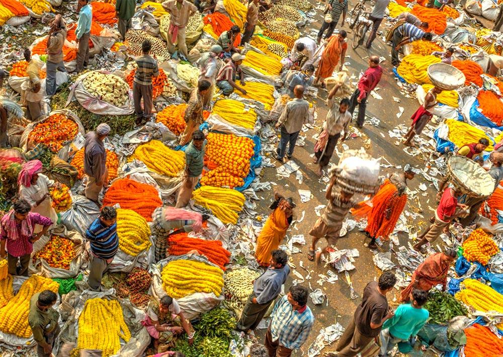 Отдых в Индии лайфхаки и правила безопасности рынок