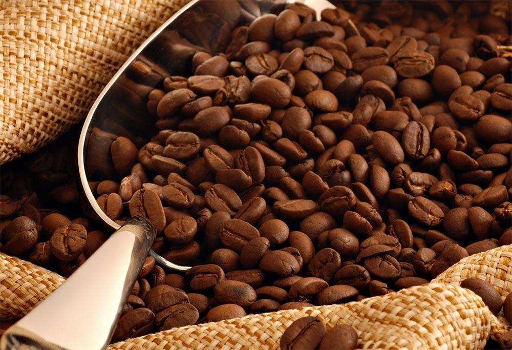 Вредные привычки почки кофеин