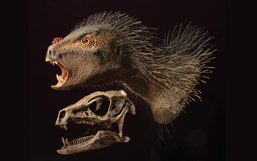 причудливые виды живых существ Pegomastax