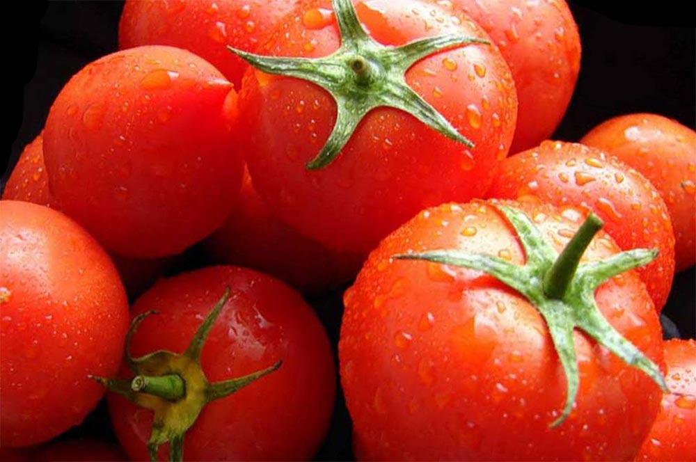 способы заморозки фруктов и овощей томаты