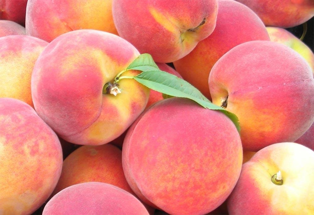 способы заморозки фруктов и овощей Персики