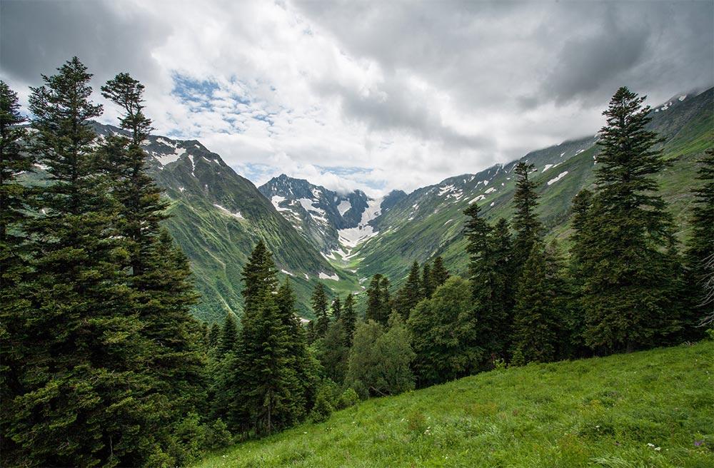 природный заповедник России Кавказский заповедник