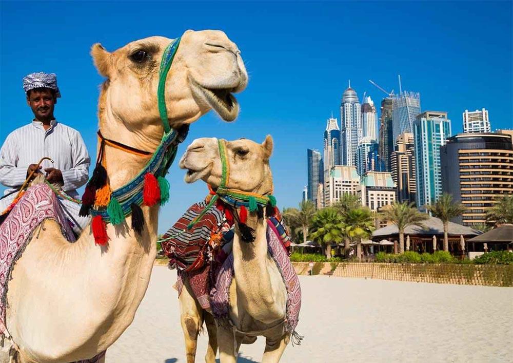 путешествие места Дубай Объединенные Арабские Эмираты