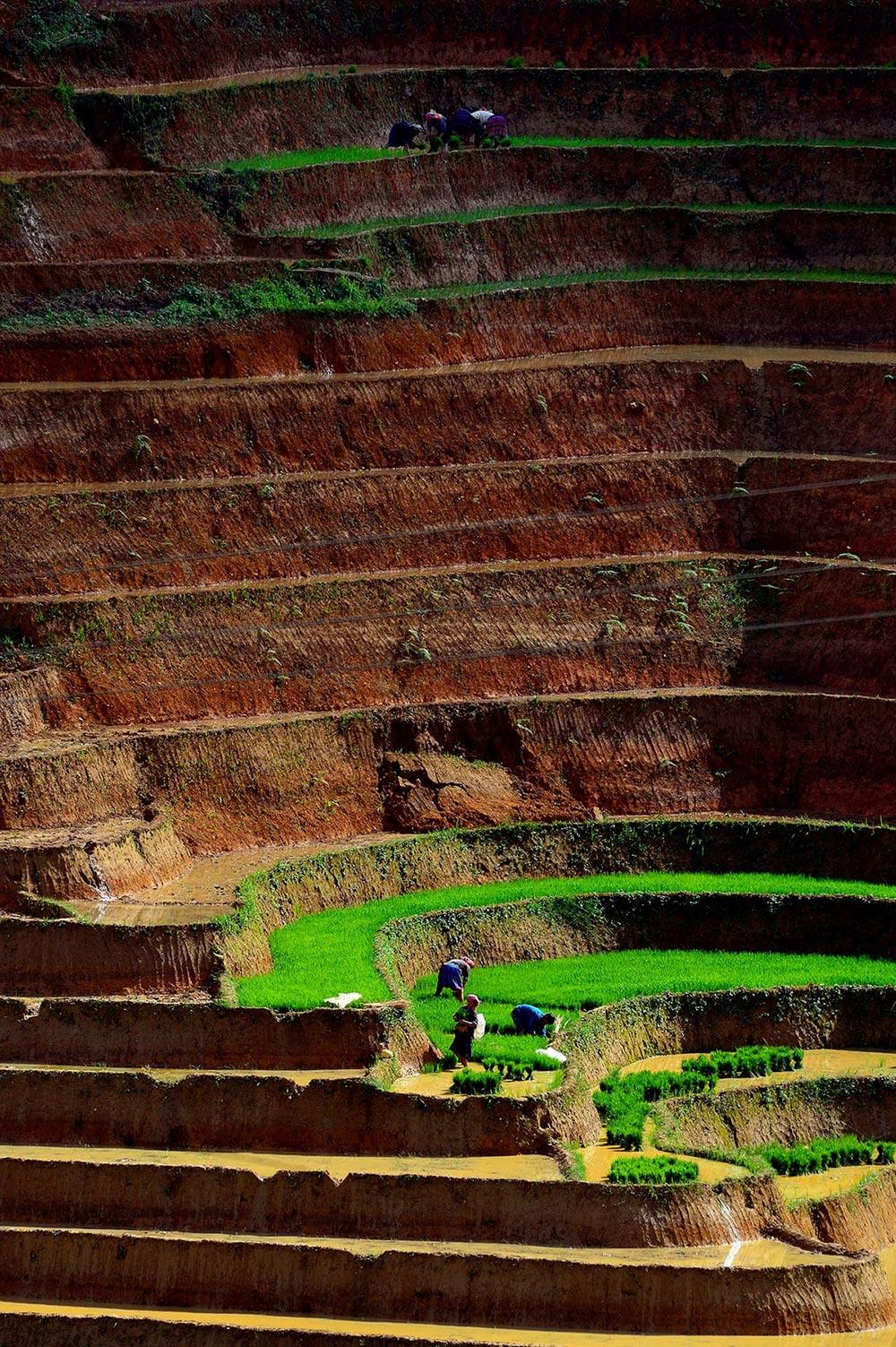 Шорт-лист фотоконкурса Фото земли Earth Photo 2018 Террасное поле Ли Хоан Лонг