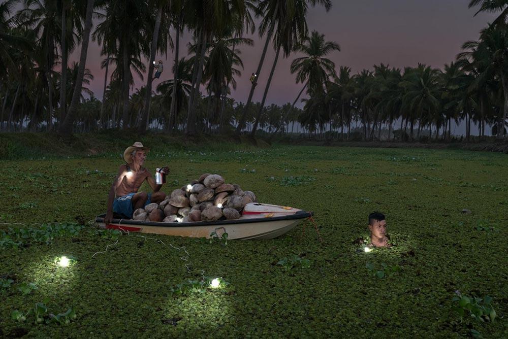 Шорт-лист фотоконкурса Фото земли Earth Photo 2018 Мужчина и его напарник перевозят кокосы через реку к себе домой Рубен Сальгадо Эскудеро