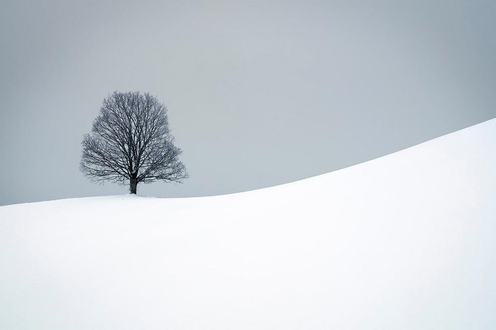 Шорт-лист фотоконкурса Фото земли Earth Photo 2018 В поисках тишины Пол Кристенер