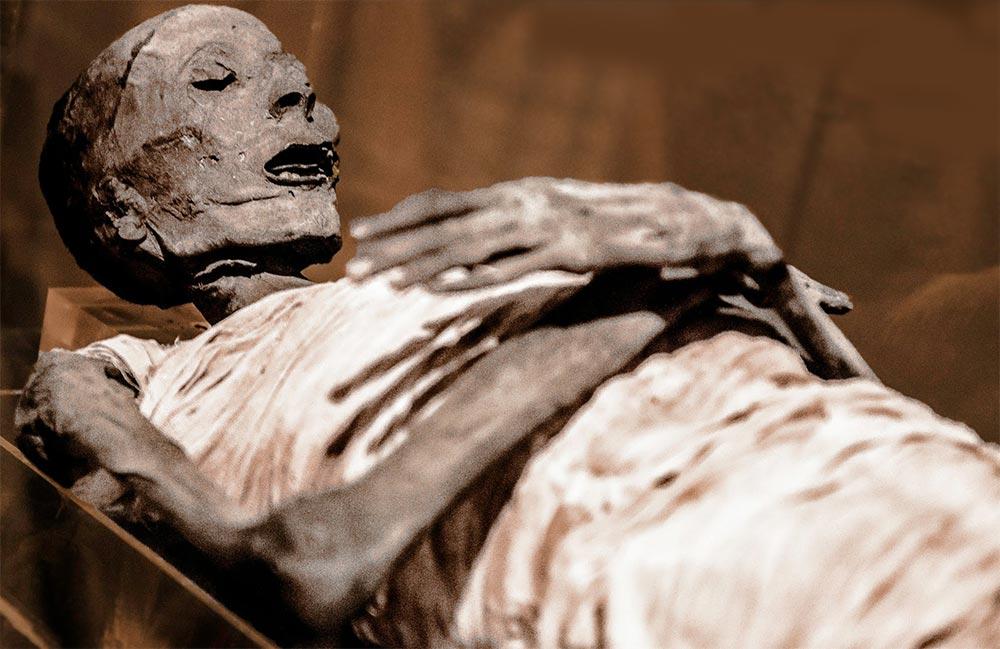 факты о мумиях Лекарственные мумии