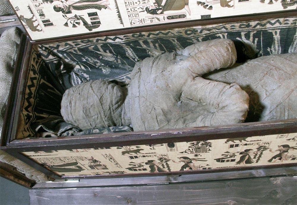 факты о мумиях Запасы для загробной жизни