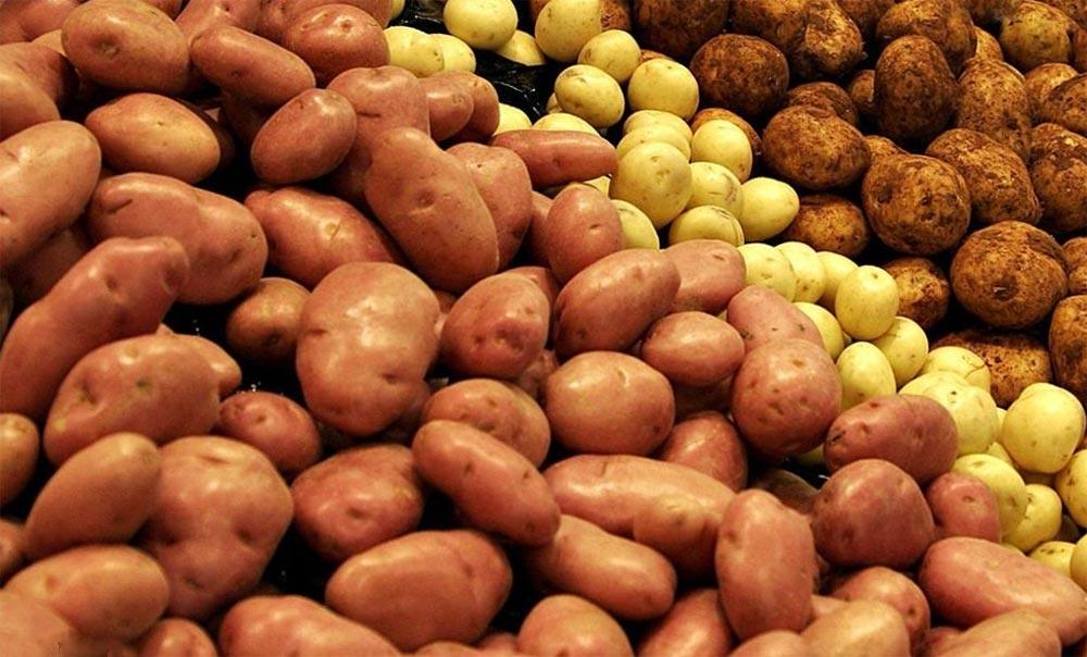 полезные продукты картофель